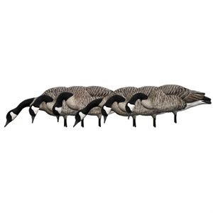Appelants AXP HONKERS FEEDER PACK Outardes