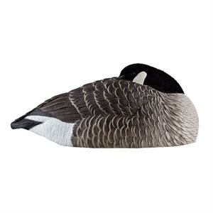 Appelants AXP HONKER SLEEPERS Coquilles Outardes