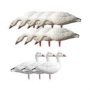 Appelants Snow Goose Feeder kit Oies
